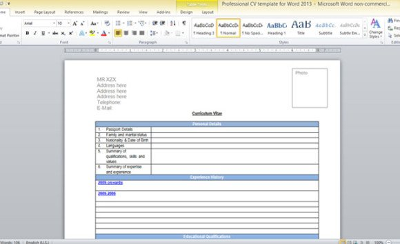 professional cv template for word 2013