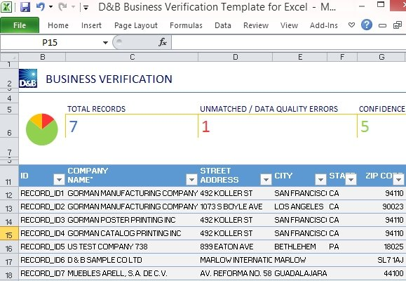 Business Verification Template for Excel | PowerPoint Presentation